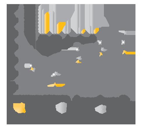 Figure 2: LGG And BB-12 Combination Regulates Pregnancy Glucose Metabolism.