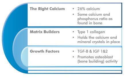 Hydroxyapatite – A Calcium for Building Bones